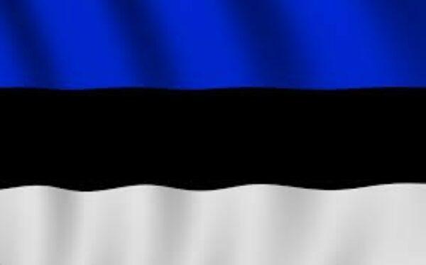 МИД Эстонии приводит примеры реализованных антироссийских санкций