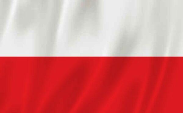 МИД Польши отвечает на призыв Фундации «Открытый Диалог» сделать информацию об антироссийских санкциях широкодоступной