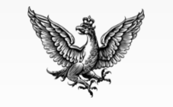 Rzeczpospolita: продолжается онлайн сбор средств для #PosiłekDlaLekarza