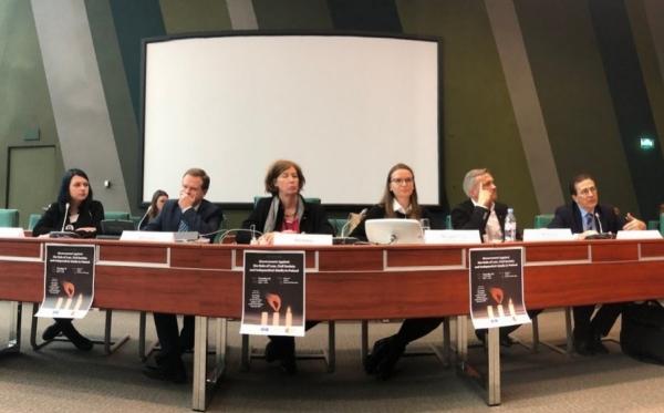 Верховенство закона, свобода СМИ и независимость НПО в Польше – 4-дневная поездка в Страсбург